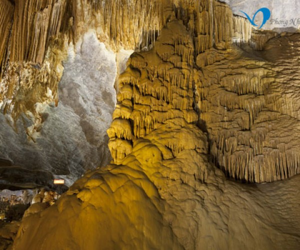 Phong Nha Paradise Cave And Dark Cave Tour Travel Tours D