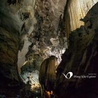Tour Du Lich Dong Phong Nha Vuon Thuc Vat I