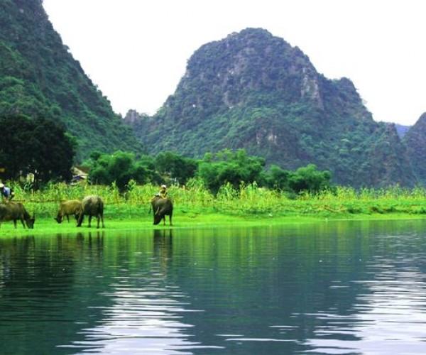 Tour Phong Nha Hang Toi 04